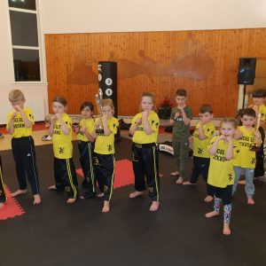 dundee elite kickboxing kids 2